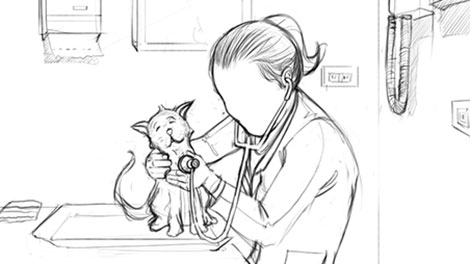 Novartis Animal Health: Storyboard